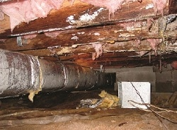 Damp Crawl Space in Tennessee - Ground Up Foundation Repair provides crawl space encapsulation in TN.